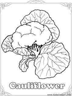 Trend Vegetable Coloring Pages 47 Vegetables Coloring Pages Vegetable