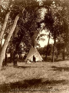 Cheyenne camp in the Cottonwoods.
