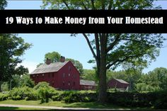 19 Ways to Make Money from Your Homestead