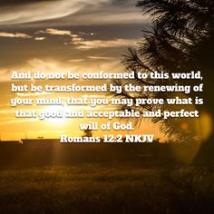 Proverbs Every way of a man is right in his own eyes: but the LORD pondereth the hearts. Rivers In The Desert, Treasures In Heaven, How To Control Anger, Get Closer To God, Amplified Bible, Rejoice And Be Glad, New King James Version, Daily Bible, New International Version