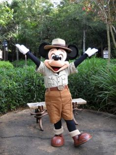 Book Review of the Unofficial Guide to Walt Disney World with Kids 2014