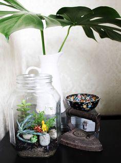 Make A Dinosaur, Terrarium, Diy Projects, Create, How To Make, Home Decor, Terrariums, Decoration Home, Room Decor