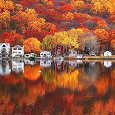 "Amazing shades of fall season! #seasons #fall #outono #autumn #fallseason #leaves #coloursofautumn @jayhagani_photography)"""