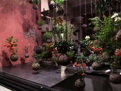 Utterly magical string garden