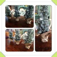 Simple Christmas table decor DIY.  Took 3 mini trees from Dollarama that were $2 ea. and spray painted the branches with white spray paint and then cut small squares of burlap and tied them with twine around the ugly bottom pots!