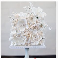 Single tier cake with fresh white flowers