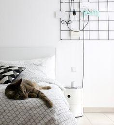 Schläfrig.   SoLebIch.de Foto: Mitglied watering #solebich #einrichtung #winterior #schlafzimmer #bedroom #cat