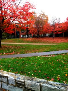 Appalachian State University in Boone, NC. So beautiful in the fall!