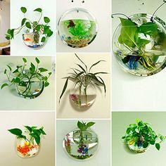 Wall Bubble Fish Tank Homecube® Large Xl Size Wall Hanging Bubble Fish Tank Flowerpot .