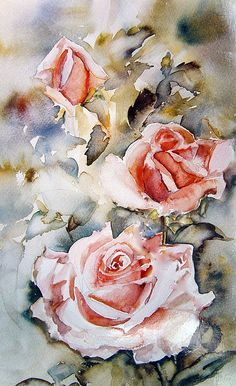 3 peach roses by shirleyromacharlton
