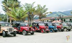 Jeep Willys, Pamplona, Blog Voyage, Golf Carts, Antique Cars, Monster Trucks, Vehicles, Travel, Jeeps