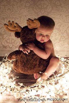 Christmas Moose   ZetWet Blog