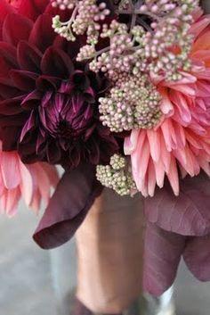 salmon + purple wedding bouquet, love this color theme. Fresh Flowers, Beautiful Flowers, Purple Flowers, Wedding Bouquets, Wedding Flowers, Red Wedding, Wedding Colors, Fall Wedding, Purple Love