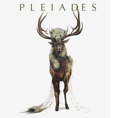 Interested in our current issue? You can purchase your copy of Pleiades 35.1 here! http://www.ucmo.edu/pleiades/subscribe/