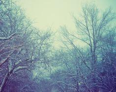 A Winter's Tale by Irene Suchoki