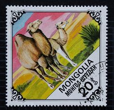 Mongolia Camels Postage Stamp Lot // 1978 Vintage Postage Stamp // Now available via PillarBoxStudio on Etsy