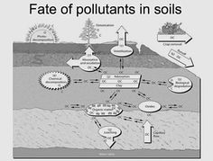 Soil contamination - Soil contamination or soil pollution is caused by the presence of xenobiotic (human-made) chemicals or other alteration in the natural soil environment.