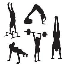 Картинки по запросу trx exercise silhouette