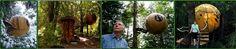 Dormir dans des boules perchées dans les arbres, Canada : http://www.trip85.com/2011/02/21/dormir-dans-des-boules-perch%C3%A9es-dans-les-arbres-canada/