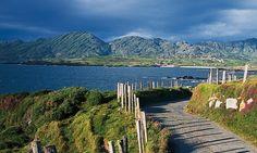 The Beara Peninsula, West Cork, Ireland aka the Emerald Isle… Cork Ireland, Dublin Ireland, Ireland Travel, Ireland Vacation, West Cork, Irish Landscape, Ireland Landscape, Vacation Trips, Dream Vacations