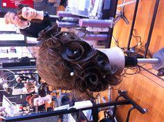 Roses of HAIR
