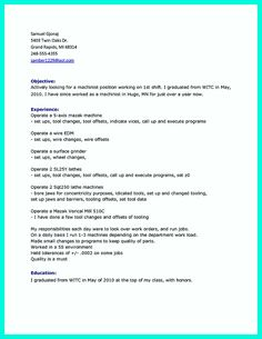 Sample Resume For Project Manager  Riez Sample Resumes  Riez