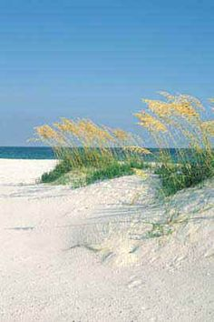 Perdido Key FL - one of my most favorite places.  I must have some beach time to help restore my soul.