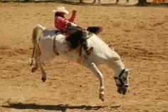 Pony Express Days  May 24 - June 2, 2012