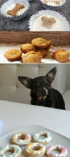 """5 """"Delicious"""" Homemade Treats Your Pooch Will Love"""