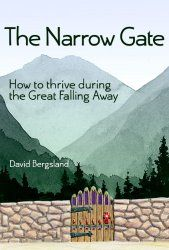 Iola's Christian Reads: Review: The Narrow Gate by David Bergsland