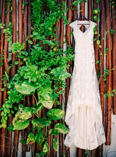 Ideas for a green wedding with eco-conscious planning tips