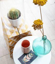 Zo op naar opa en oma. Ff aan de poest gaan daar! Eind van de middag lekker biertjes drinken op een toplocatie in Middelburg met hele fijne leuten. Fijne dag allemaal!  #wonen#interior#vrienden#vrijdagmiddagborrel#abdij#middelburg#bierfeest#yellow#flower#cactus#stolp#hema#dillekamille#pink#instahome#inside#grafischeprint#fles#interieu#styling by een.kijkje.door.mijn.ogen