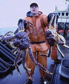how to cook alaskan king crab legs!! I guess ill keep him in the pool outside til I'm  ready to cookem  up, cause he won't fit in my frig  lol!