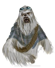 Star Wars - Citizens of the Galaxy Character Inspiration, Character Art, Star Wars Species, Edge Of The Empire, Star Wars Characters Pictures, Star Wars Concept Art, Dungeons And Dragons Homebrew, Star Wars Rpg, Fantasy Dragon