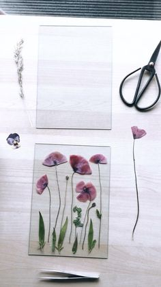 Pressed Flowers Frame, Dried And Pressed Flowers, Pressed Flower Art, Flower Frame, Flower Crafts, Diy Flowers, Creative Crafts, Diy And Crafts, Flower Artwork