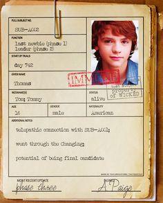 Thomas's file. The Maze Runner.