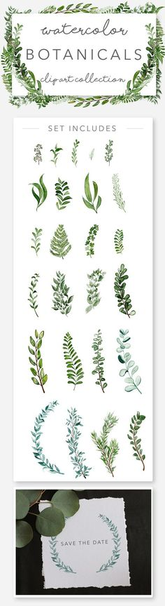 Wild Watercolor Greenery Clipart by Wooly Pronto on @creativemarket, wedding invitation art, watercolor wreaths, botanicals, wild greens, clip art set, design your own invitations, diy cards, diy graphic design #watercolorarts
