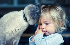 #goodmorning #pet #love #lovely #cat #baby #goodnight #cute #sleep #bed #adorable #play #cry #smile #rio #grass #kiss #kids #sweet