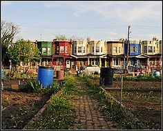 Glenwood Green Acres in North Central Philadelphia has become a large community garden and a green tourist attraction. Hillside Garden, Urban Homesteading, Affordable Housing, Urban Farming, Organic Gardening, Urban Gardening, Acre, The Neighbourhood, Canning