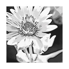 Black and White Enlarged Flower Canvas Stretched Canvas Prints