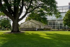 National Botanic Gardens Dublin - grünes Paradies auf der grünen Insel