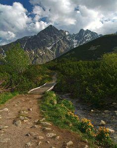 Biele pleso, Kežmarská Biela voda, Tatry Mountains, Nature, Travel, Naturaleza, Viajes, Destinations, Traveling, Trips, Nature Illustration