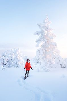 The Ultimate Guide to Visiting Lapland, Finland in Winter Finland Travel Destinations Croatia Travel, Thailand Travel, Bangkok Thailand, Hawaii Travel, Italy Travel, Travel Europe, Helsinki, Northern Lights Ranch, Amazing Destinations