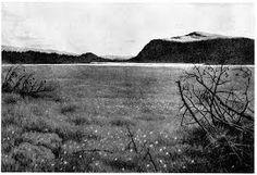 Bilderesultat for Theodor Kittelsen