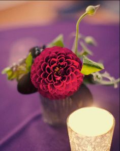 The cocktail tables will have a simple white bud vase with a single purple magenta dahlia.