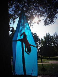 Aerial silks on campus in the trees