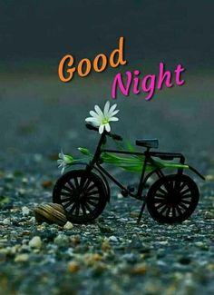 Evening Greetings, Good Night Greetings, Good Night Messages, Good Night Quotes, Morning Greetings Quotes, Morning Qoutes, Good Night Image, Good Morning Good Night, Morning Msg