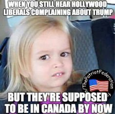That face you make when… – Liberal Logic 101