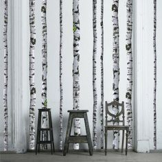 Super Real Birch Tree Wall Decals and three chairs