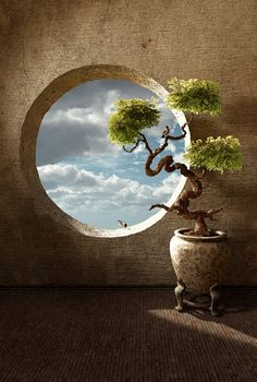 ~~Haiku ~ Bonsai in round window by *curious3d~~